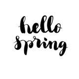 Cześć wiosny literowania wektor Obraz Royalty Free