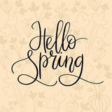 Cześć wiosny ręki literowania inskrypcja Wiosna kartka z pozdrowieniami Szczotkarska kaligrafia Obraz Stock