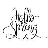 Cześć wiosny ręki literowania inskrypcja Wiosna kartka z pozdrowieniami Szczotkarska kaligrafia Fotografia Royalty Free