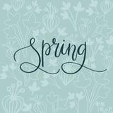 Cześć wiosny ręki literowania inskrypcja Wiosna kartka z pozdrowieniami Szczotkarska kaligrafia Zdjęcie Royalty Free