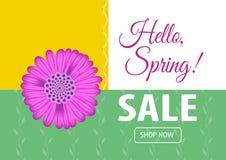 Cześć wiosny sprzedaży sztandar Royalty Ilustracja