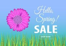 Cześć wiosny sprzedaży sztandar Ilustracji