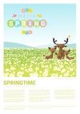 Cześć wiosny krajobrazowy tło z jelenią rodziną Zdjęcia Stock