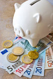 Czech banknotes and pigy bank Royalty Free Stock Images