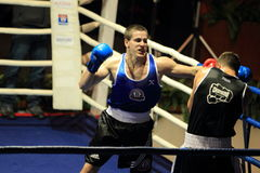 Czech boxing -  Erik Alojan Royalty Free Stock Image