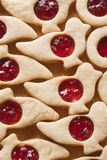 Czech christmas pastry Royalty Free Stock Images