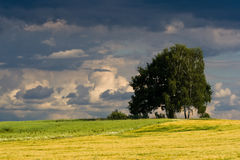 Czech countryside before the evening storm Stock Images