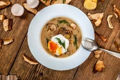 Czech dill soup Royalty Free Stock Photography