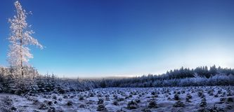 Czech Highlands winter panorama royalty free stock photos