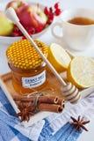 Czech homemade honey, rosehip tea with lemon. Czech homemade honey, rosehip tea with fresh lemon, star anise and whole cinnamon Royalty Free Stock Photos