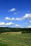Czech landscape in summer Stock Photography
