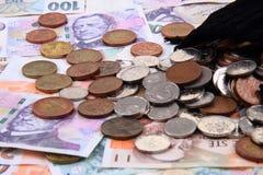 czech money background Stock Photography
