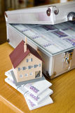 Czech money - banknotes in a case Royalty Free Stock Image