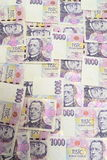 Czech money Royalty Free Stock Images