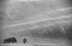 Czech Moravia hills. Agriculture . Arable lands in spring. Royalty Free Stock Images