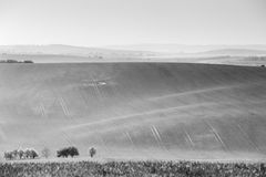 Czech Moravia hills. Agriculture . Arable lands in spring. Stock Photography