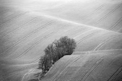 Czech Moravia hills. Agriculture . Arable lands in spring. Stock Images