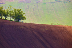 Czech Moravia hills. Agriculture. Arable lands in spring Stock Images