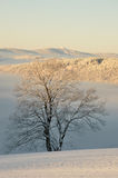 Czech mountains in winter Royalty Free Stock Photos