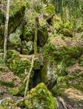 Czech National Natural Heritage Rudice Basin Stock Image