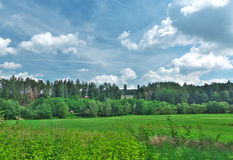 Czech nature. Blue sky - pretty nature - trees Stock Images