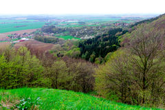 Czech nature. Forests and cities in background Stock Photography