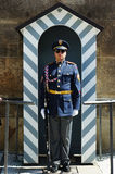 Czech palace guard Stock Photography