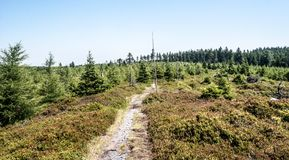 Czech - polish border trail in Rychlebske hory mountains near Brousek hill. Czech - polish border trail in Rychlebske hory mountains near Brousek hil with Stock Images