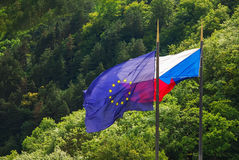Czech republic and European Union EU flag tree background Stock Images