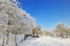 Czech republic garden in winter time stock photos