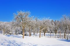 Czech republic garden wire fence in winter time Royalty Free Stock Photos