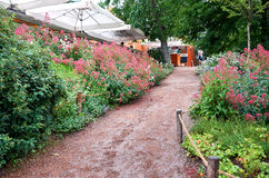 Czech Republic. Prague. Prague Zoo. Road and flowers. June 12, 2016. Czech Republic. Prague. Prague Zoo. Road and flowers in zoo. June 12, 2016 stock images