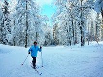 Czech Republic-skier in forest near Trutnov. View on the skier in forest in winter near city Trutnov in Czech Republic Royalty Free Stock Photos