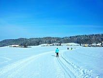 Czech Republic-skier near Trutnov. View on the skier iin winter near city Trutnov in Czech Republic royalty free stock photos