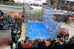 Free Czech Squash Championship Royalty Free Stock Photography - 51375707
