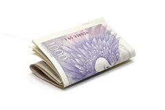 Czech thousand banknotes money. Isolated on white background