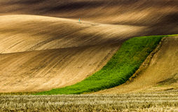 Czech Tuscany in South Moravia Stock Images