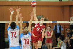 Czech volleyball extraleague Royalty Free Stock Image
