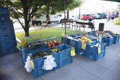 Czechia人销售和购买产品在有机农夫街市上 免版税库存照片