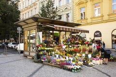 Czechia人销售和购买开花在花店近我 P Pavl 库存图片