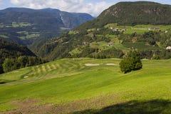 czeka klubu golfa ilustracje więcej mój zadawalają portfolio bawić się Zdjęcie Royalty Free