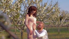 Czekanie dziecko, szczęśliwi ojców uderzenia i słucha kobiety brzucha z nienarodzonym dzieckiem podczas gdy relaksujący w kwitnąc zbiory