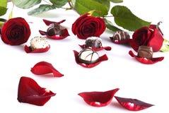 czekolad róże Zdjęcie Stock