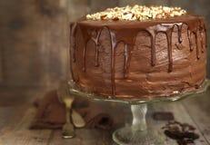 Czekolada ablegrujący tort z dokrętkami zdjęcia stock