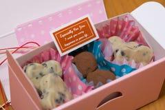 czekolada domowej roboty Fotografia Royalty Free
