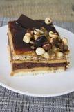 Czekolada i dokrętka tort Zdjęcie Royalty Free