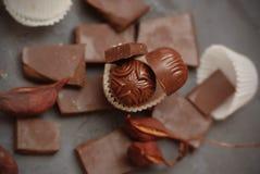 Czekolada kawałki na Szarym tle czekolada Grzywnów kawałki czekolady sweets truflowi czekolady odizolowanych Horyzontalny wizerun Zdjęcie Stock