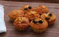 Czekolada układu scalonego muffins Obrazy Stock