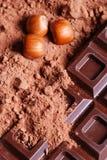 czekoladowa pastylka Zdjęcie Royalty Free