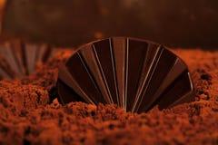 Czekoladowa skorupa na czekoladowej plaży zdjęcie stock